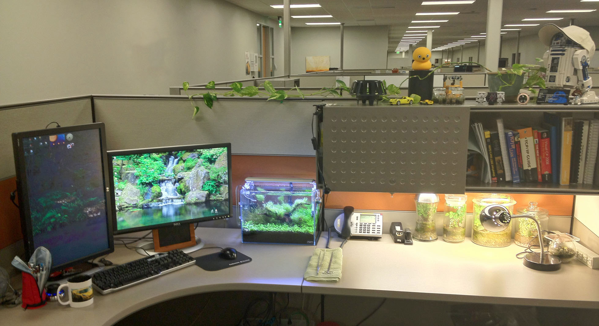 Fish tank for the office - And A Shot Of The Entire Cubicle
